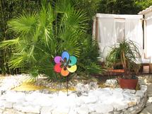 Nouvelle galerie photos : le jardin